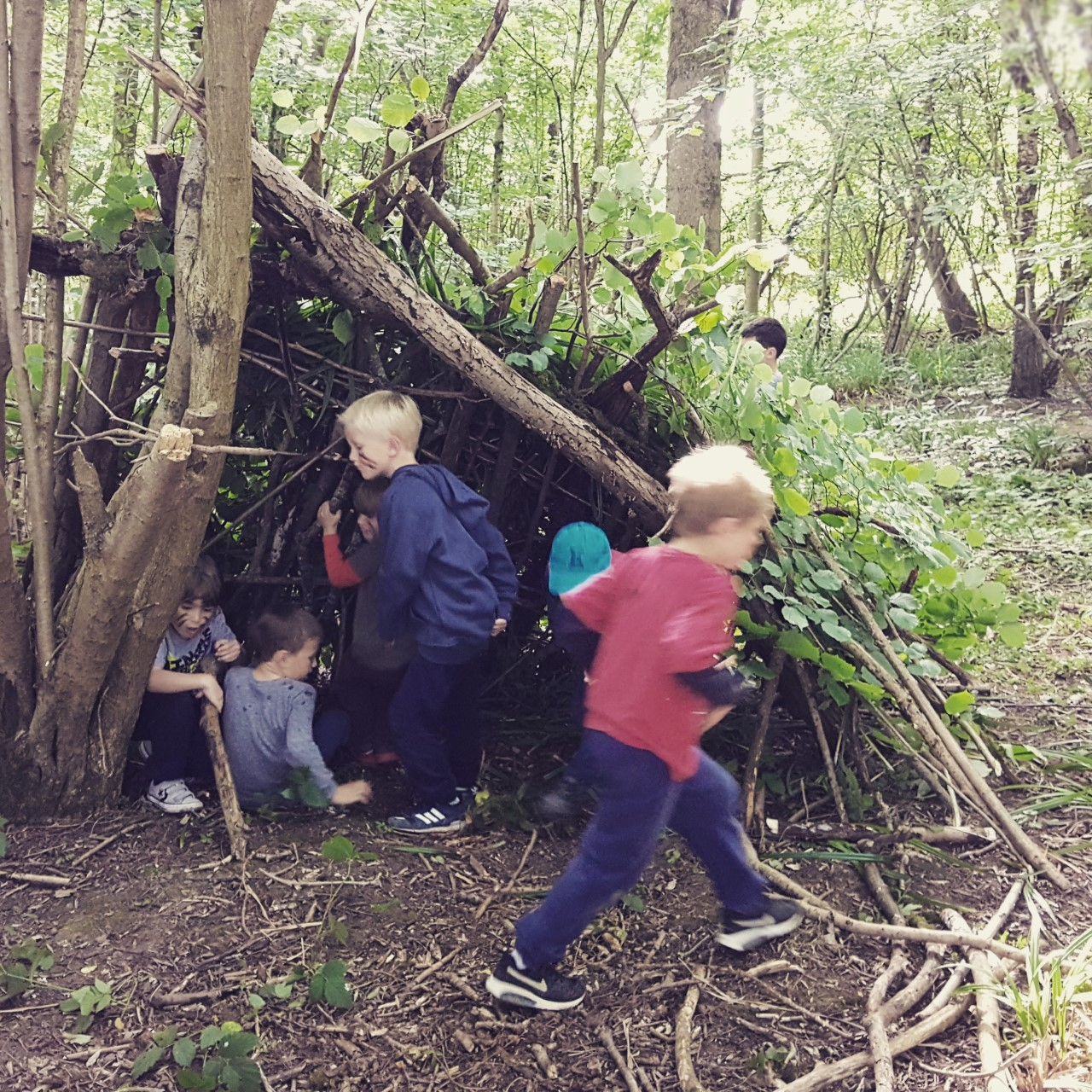 bushcraft_picture1(1)